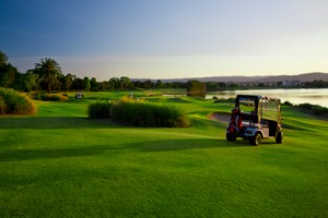 Golf Course and buggies